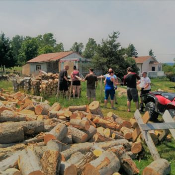 Les semeurs d'Espoir - Coupe de bois